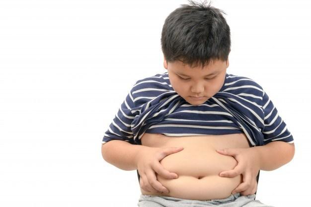orang obesitas